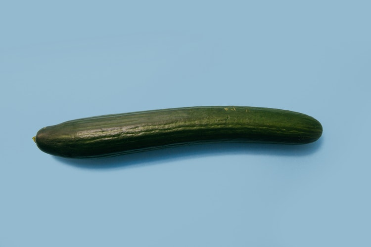 5 inch penis